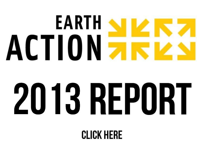 2013 Campaign Report